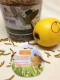 Chicken Toy & Mealworms